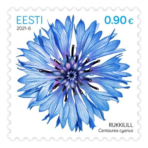 爱沙尼亚3月1日发行矢车菊邮票